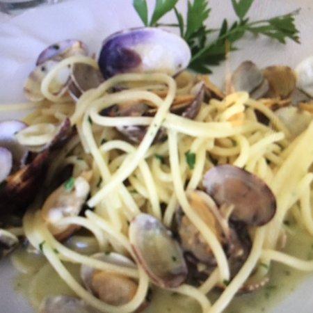 Il Timone : Spaghettone di Gragnano alle vongole veraci