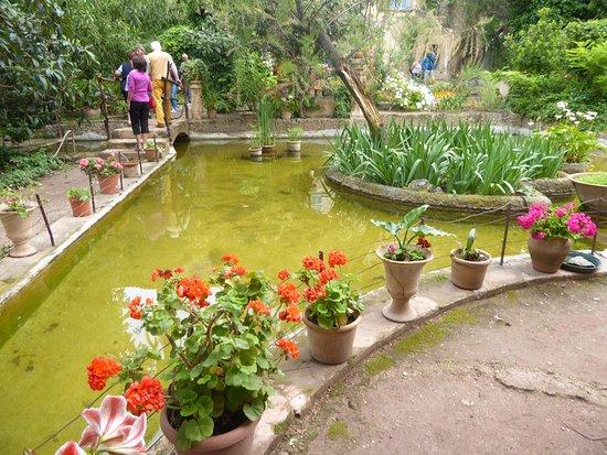 Son Marroig: Estanque en los jardines