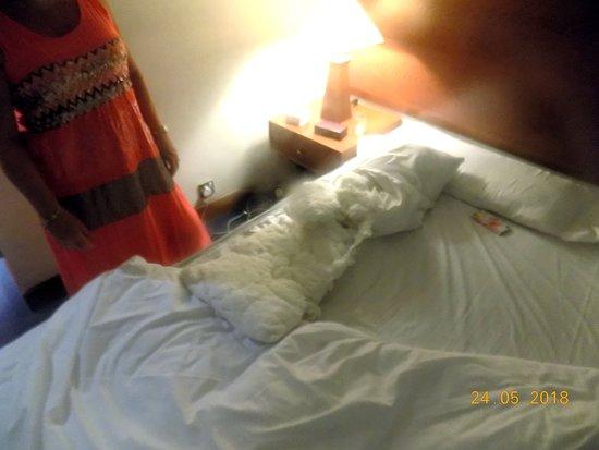 Crown Resorts Horizon: Pillow case internals