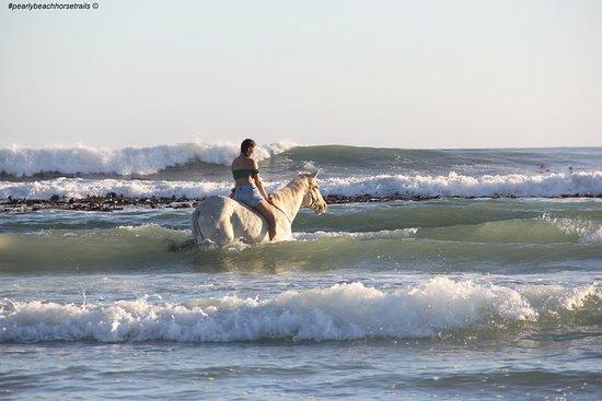 Pearly Beach照片