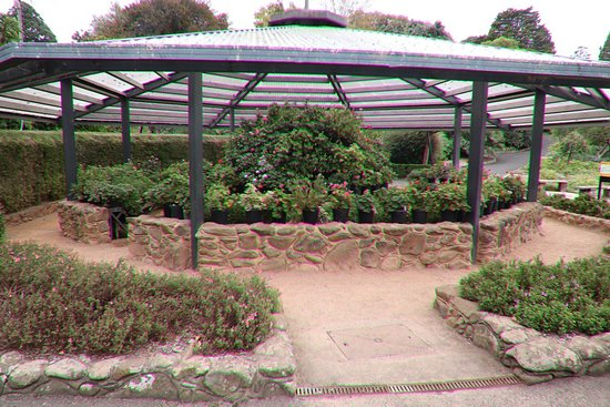 Geelong Botanical Gardens: A shelter for plants