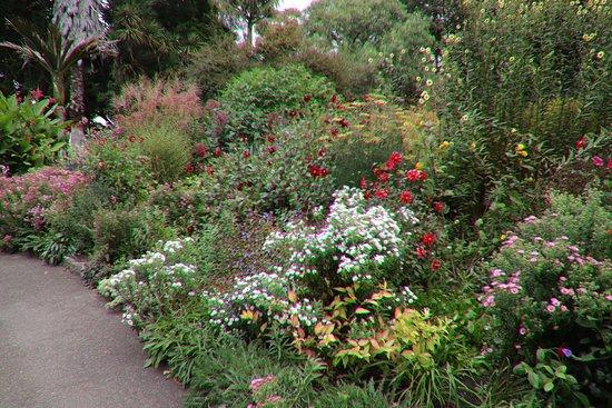 吉朗植物园照片