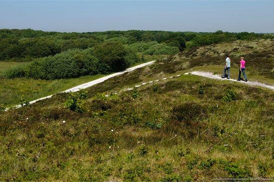 Natuurgebied Zwanenwater照片