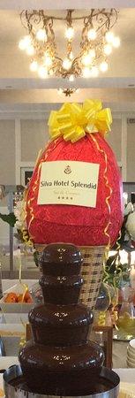 Silva Hotel Splendid Picture