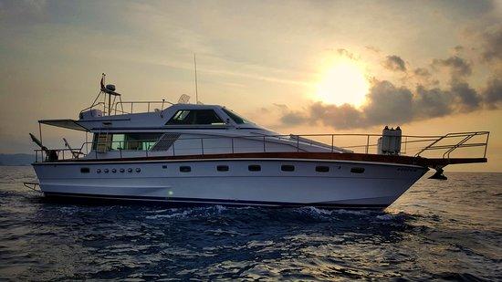 Subfari Active Charters Ibiza