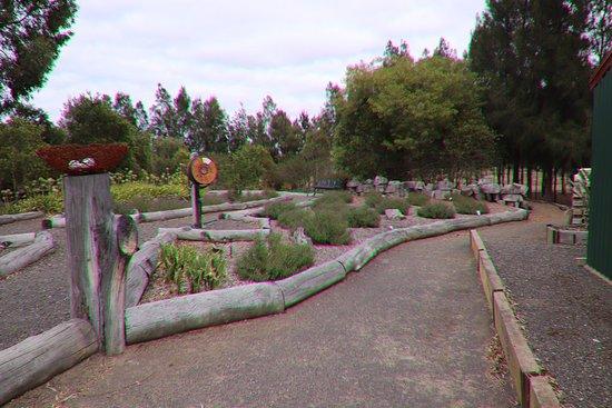 Yarrabee Native Garden: Attractive!