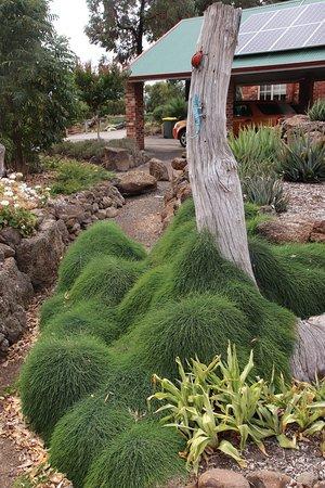 Yarrabee Native Garden: Unique!