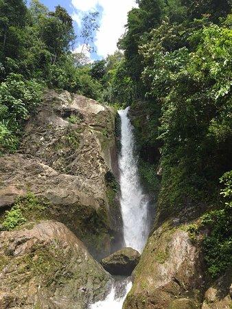 Wild Sumatra Tours-billede