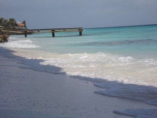 Explorer Tours Bonaire: Sorobon Beach