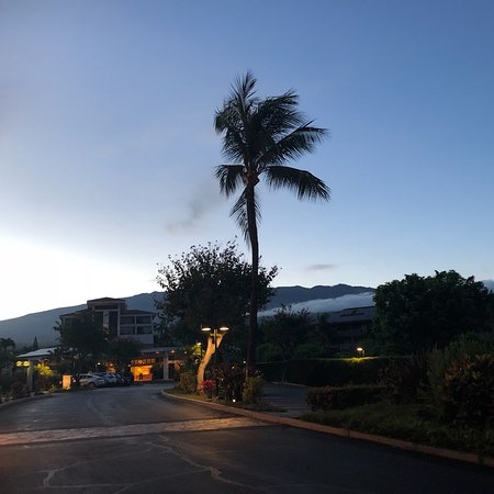 Maui Coast Hotel : The front of the hotel has some great views