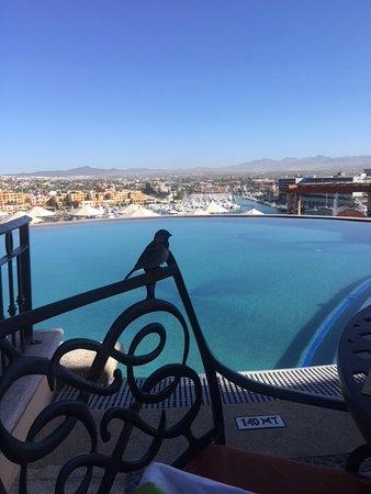 Playa Grande Resort : This was at The Ridge overlooking the marina side.