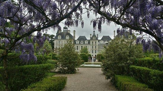 雪瓦尼城堡照片