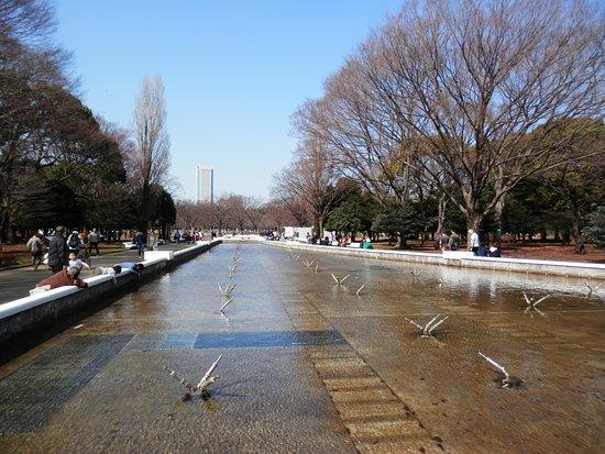 สวนโยโยกิ: flea market saturdays next to Yoyogi park