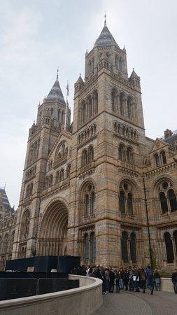 พิพิธภัณฑ์วาติกัน: Natural History Museum London