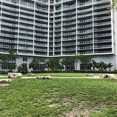 迈阿密圆环艺术街照片