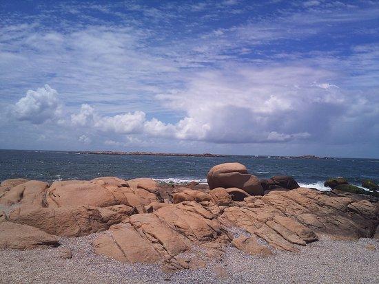 Parque Nacional de Cabo Polonio: Blurred Sealion