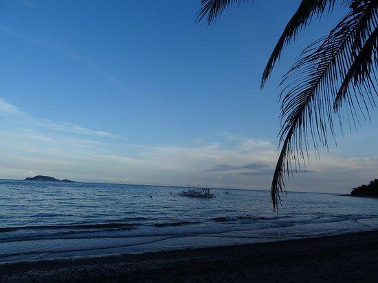 Apo Island Marine Reserve: Jolie Cabane Bambou à côté du Check Ppoint où l'on paye les Taxes du Parc Marin