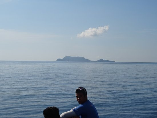 Apo Island Marine Reserve: Coral and Reef