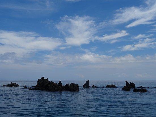 Apo Island Marine Reserve: Apo Island : Rock Point