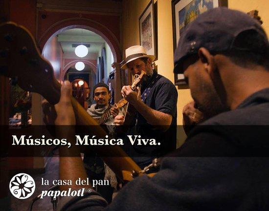 La Casa del Pan Papalotl: En Casa Del Pan Chiapas es una tradición encontrar música en vivo, con viajeros de todo el mundo