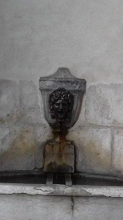Musée de l'Ancien Éveche : fontaine