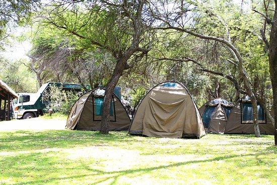 River Tent - 圭洛Antelope Park的圖片 - Tripadvisor