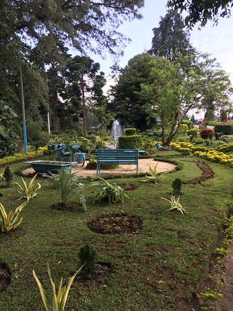 The Hill Club : 花園