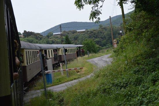 Train à Vapeur des Cévennes : TCHOUTCHOU
