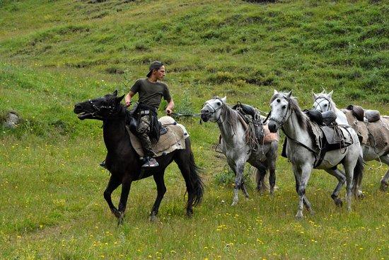 Tusheti National Park, Geórgia: Wilde Kaukasus, Touren in Georgien.