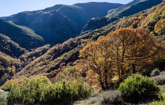 Penalba de Santiago, España: Valle del Silencio desde Montes de Valdueza