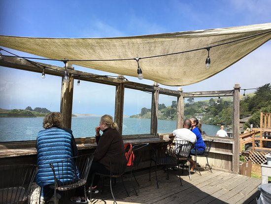 Caminata por Sonoma Redwoods y kayak costero: Lunch break view at the Aquatic Cafe