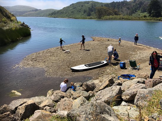Caminata por Sonoma Redwoods y kayak costero: Rest spot for lunch at Aquatic Cafe