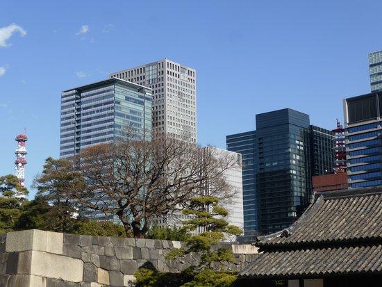 Tokiotours: Cartoline da Tokyo, Giappone
