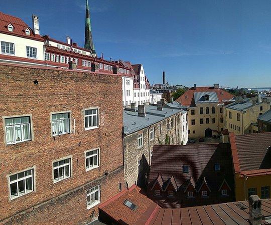 Olevi Residents Photo