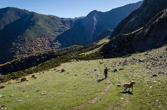 """Tebaida Berciana: """"Chano collado"""", a 1300m de altitud."""