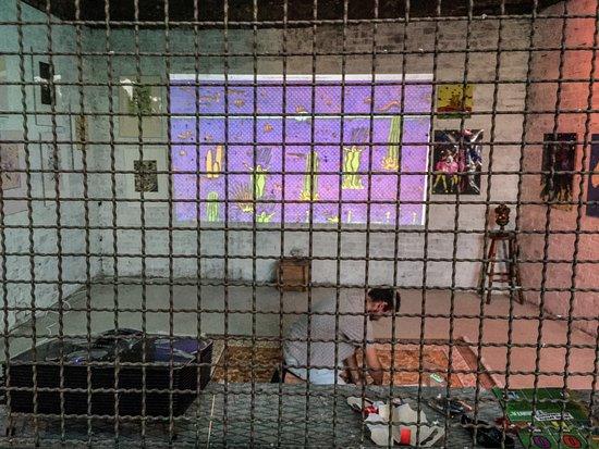 Zooart: interno di una gabbia