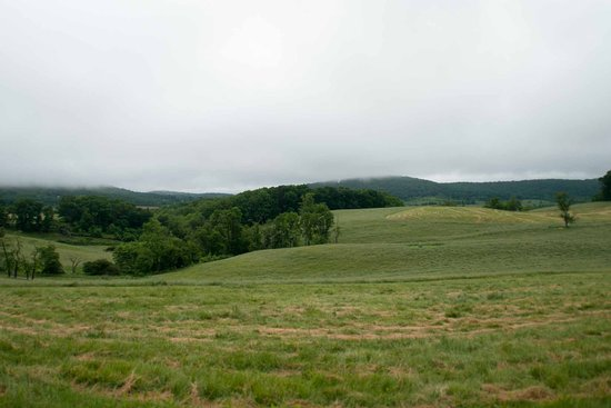 Sky Meadows State Park: view from the trail