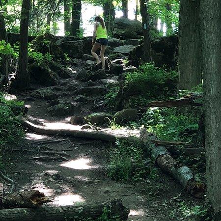 Foto de Rockway Falls