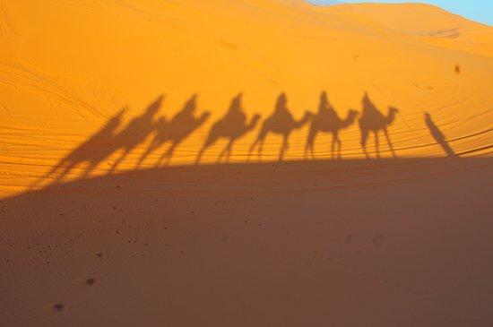 Sahara Bereber Tours: siluetas