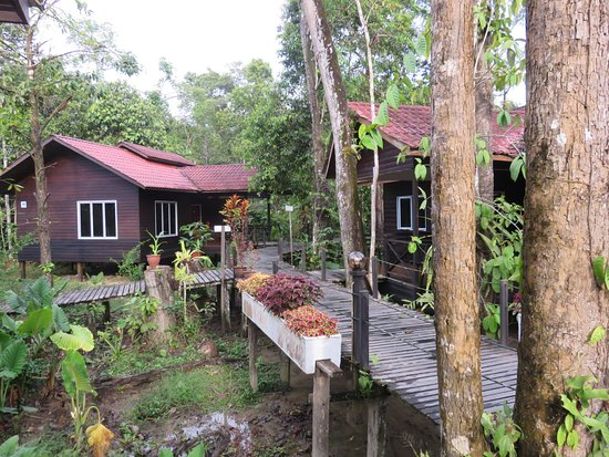 Kinabatangan District, Malasia: Lodges