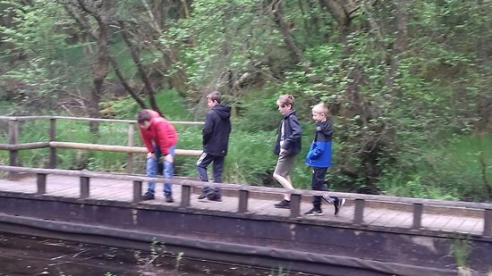 Garwnant Visitor Centre: Inspecting the water