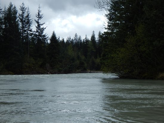 Mendenhall Glacier Float Trip: Beautiful scenery along the river.