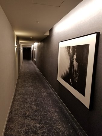Kimpton Aertson Hotel Photo