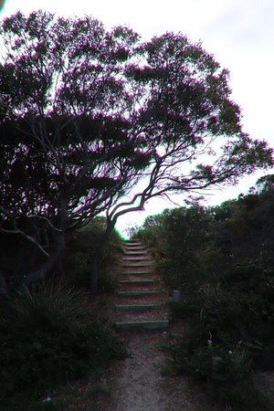 Denison Beach: Going up the wooden stairs