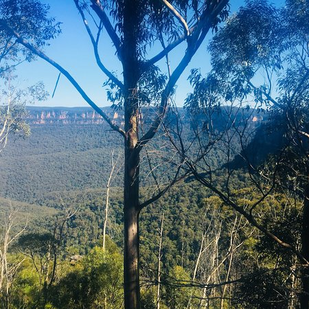Sydney Great Escapes - Blue Mountains Day Tours Εικόνα