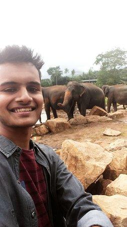 Foto de Excursión por la ciudad de Kandy desde Colombo
