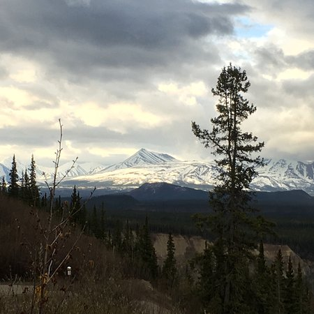 Denali Photo Guides Photo