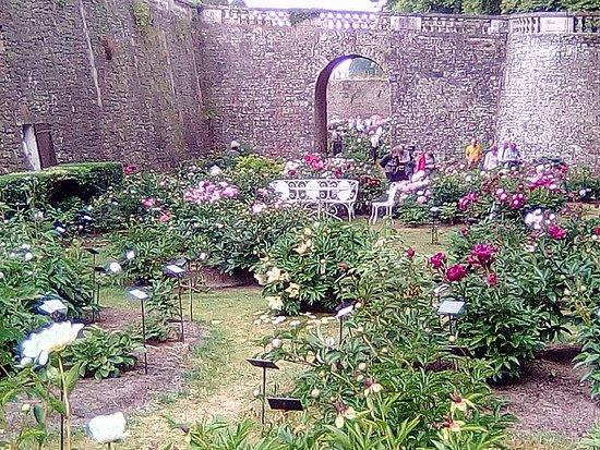 Chateau de Sourches: magnifique collection