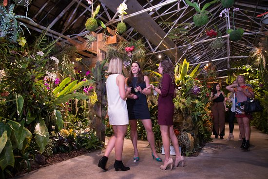Marie Selby Botanical Gardens: Nighttime events in the conservatory