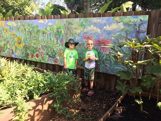 Edible Garden In The Children S Rainforest Garden Picture Of